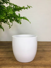 Load image into Gallery viewer, Elegant White Plant Pot