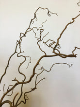 Load image into Gallery viewer, Contorted Hazel Branch