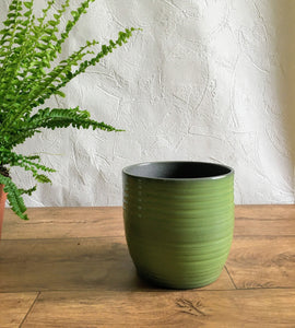 Ribbed Plant Pot - Green