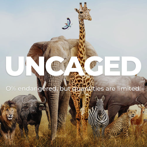 Uncaged Collection - 0% endangered, but quantities are limited.