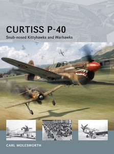 Curtiss P-40 - ChesterModelCentre