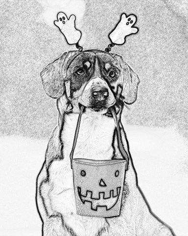 A dog holds a Halloween candy container. The dog is also edited to look like a pencil, or sketch, drawing.