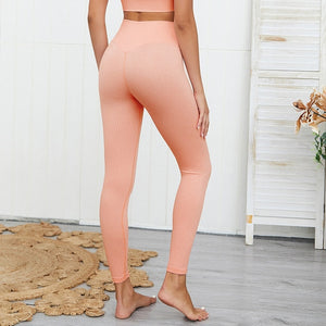 Seamless Ribbed Set