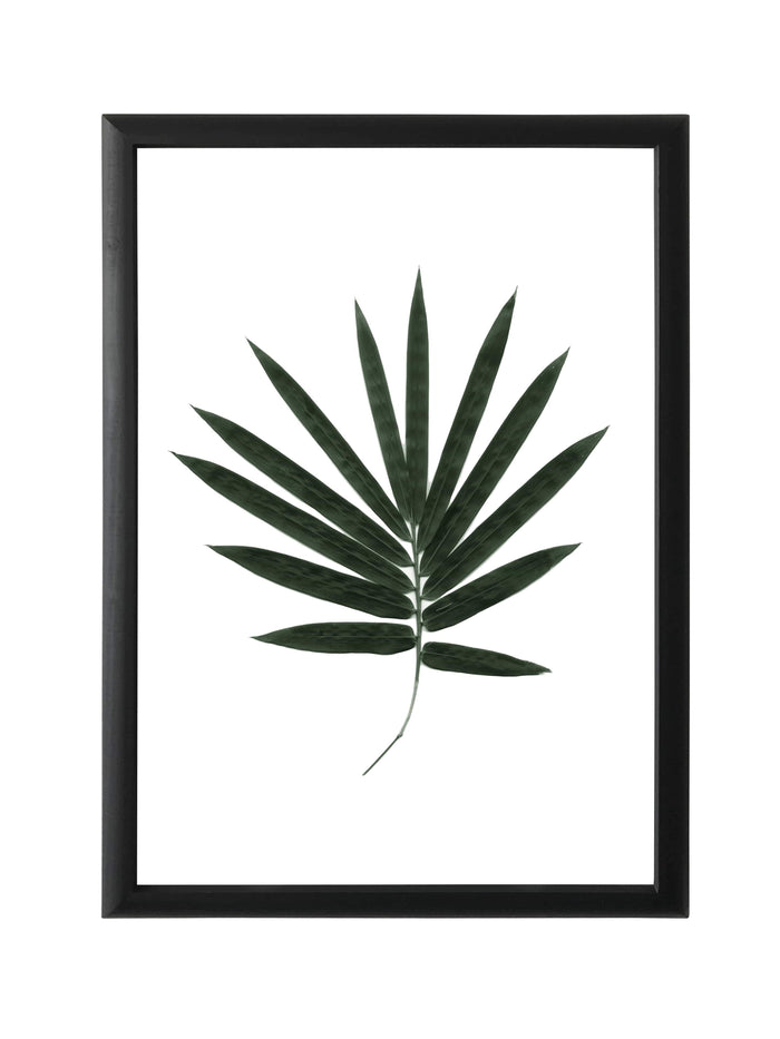 elevenpast Wall art Framed Print -Tropical leaf