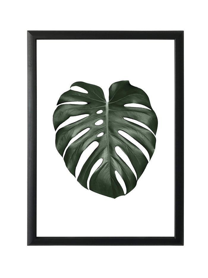 elevenpast Wall art Framed Print - Tropical leaf Monsteria