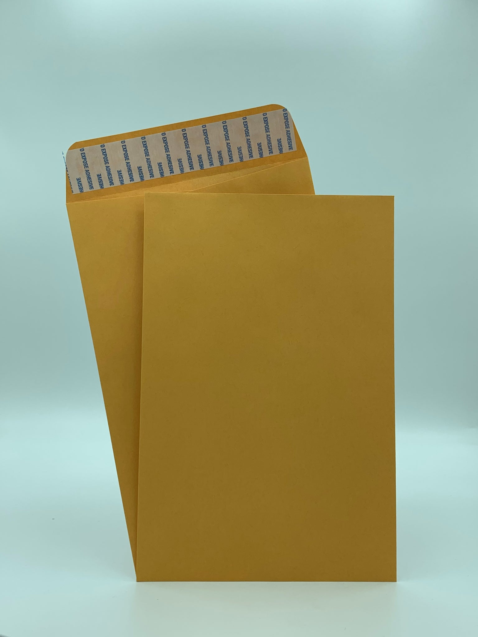 "Cashier Depot 6"" x 9"" Catalog (Open End) Envelopes, Premium 24lb. Kraft, Peel & Seal Flap, 500/Box"