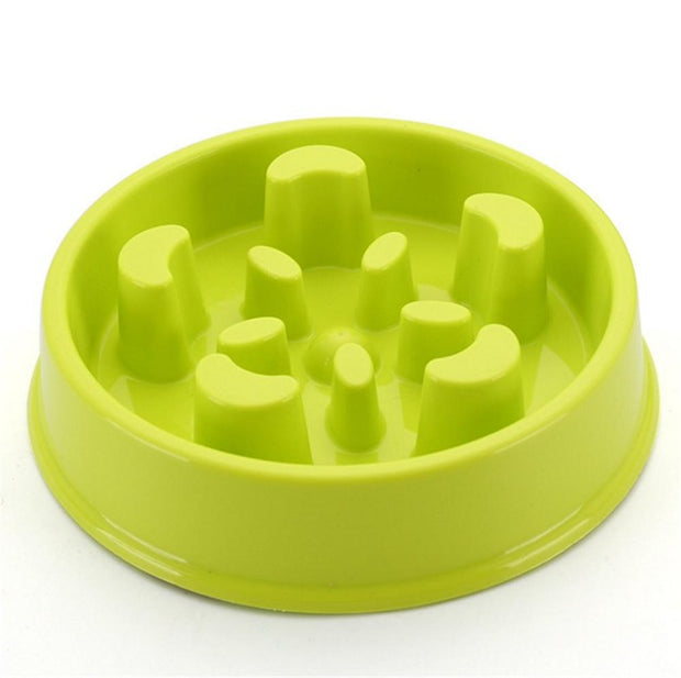 Slow Dog Feeding Bowl