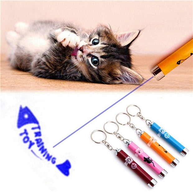 Portable Creative Cat Laser Toy