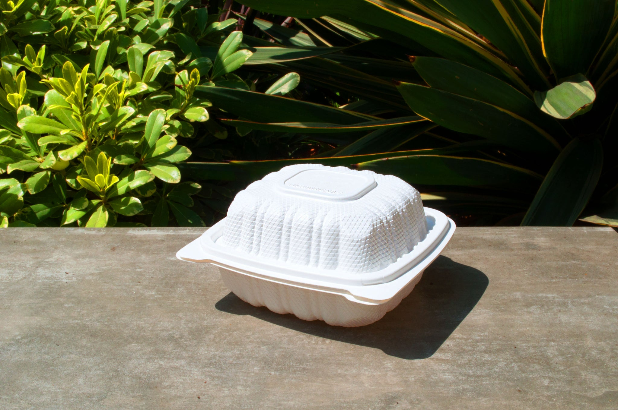 "6"" Hamburger Clamshell Box"