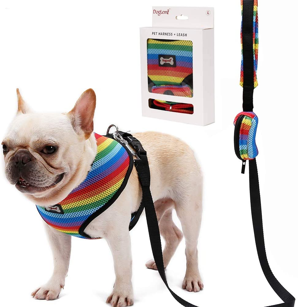 Rainbow Dog Harness and Leash
