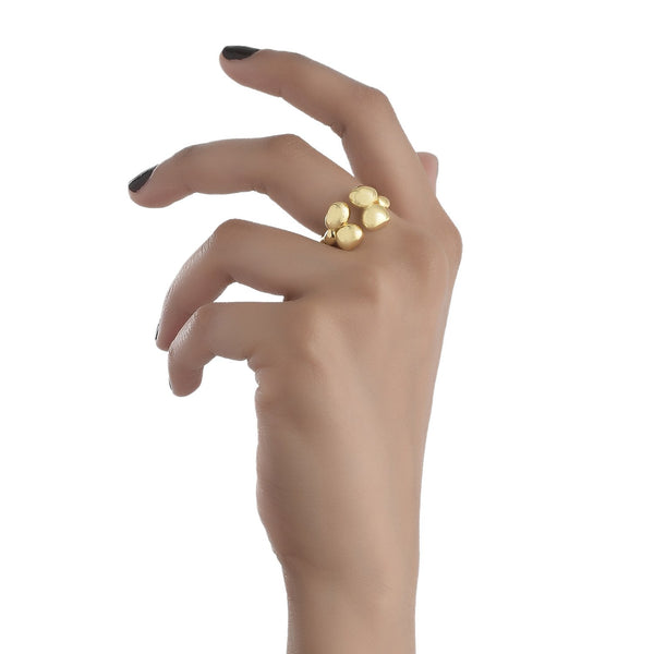 CLUSTER RING RING ARVINO