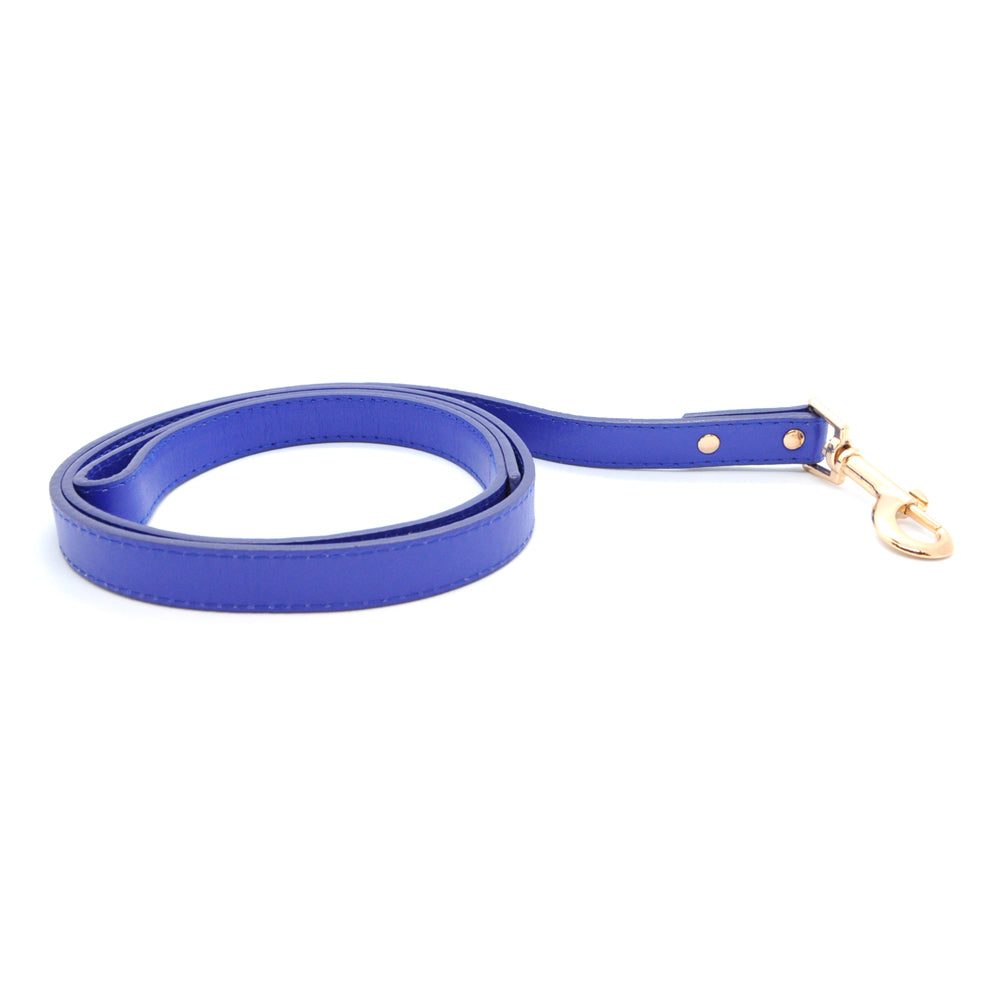 Blue - Premium Pet Lead (Gold)