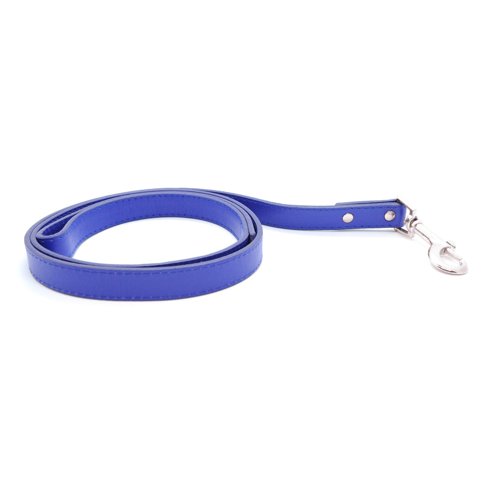 Blue - Premium Pet Lead (Silver)