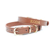 Brown - Premium Personalised Pet Collar (Gold)