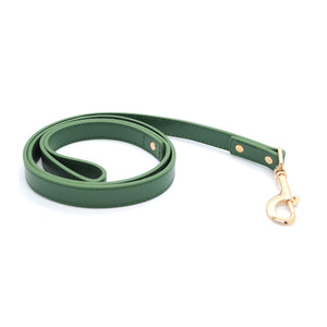 Green - Premium Pet Lead (Gold)