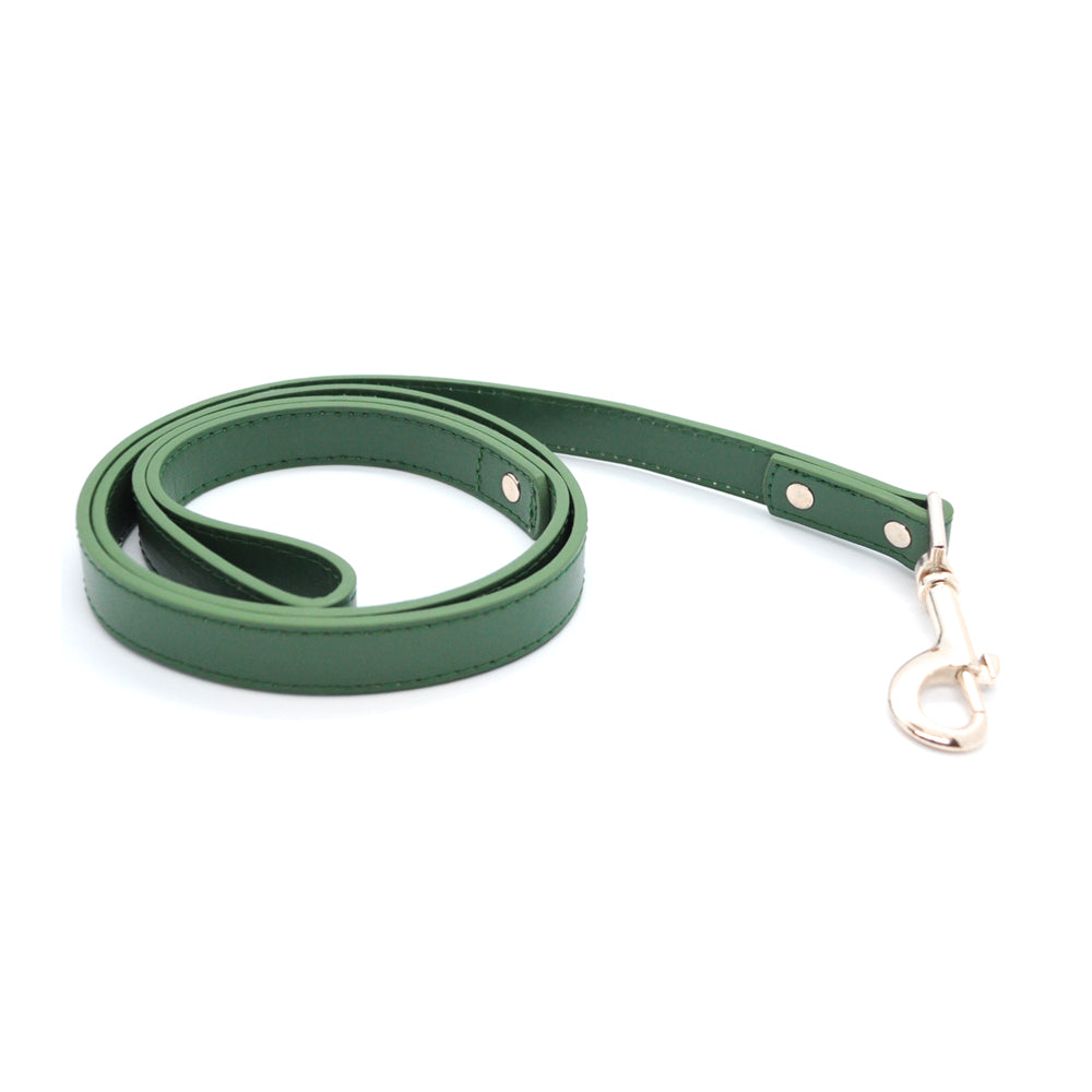 Green - Premium Pet Lead (Silver)