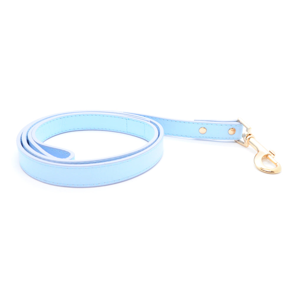 Light Blue - Premium Pet Lead (Gold)