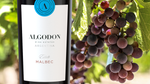 We're celebrating Malbec World Day!