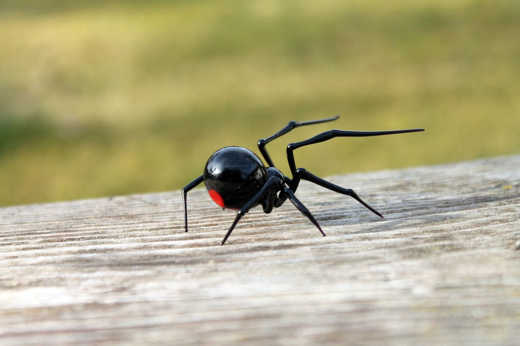 Glass black Widow Figurine, Blown Glass Spider sculpture