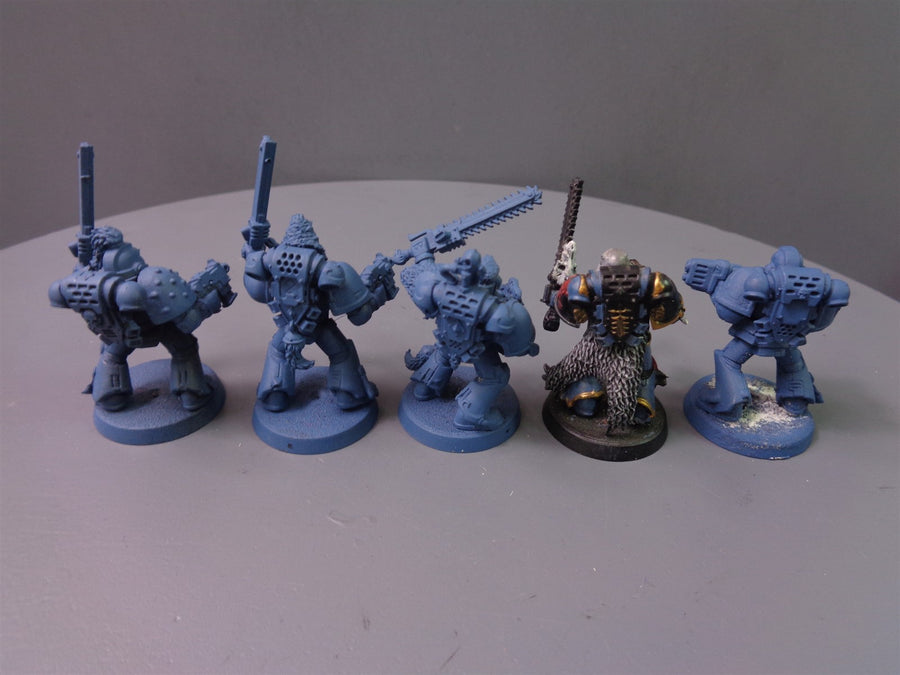Space  Wolves Wolf Guard Vets Pack