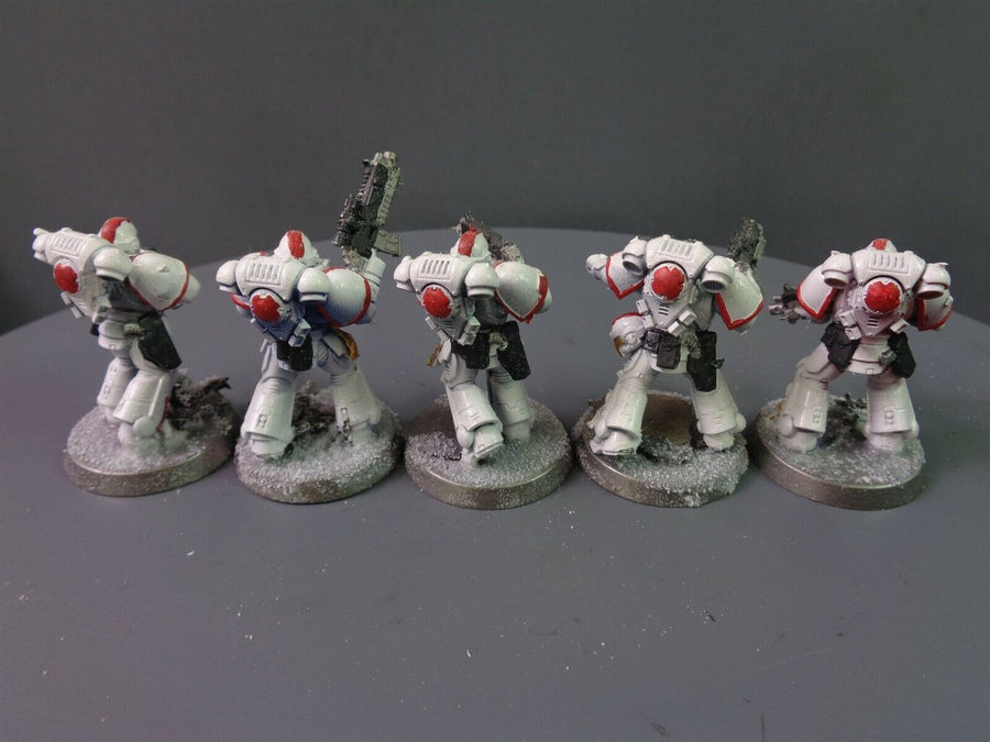 Primaris White Scars Intercessors