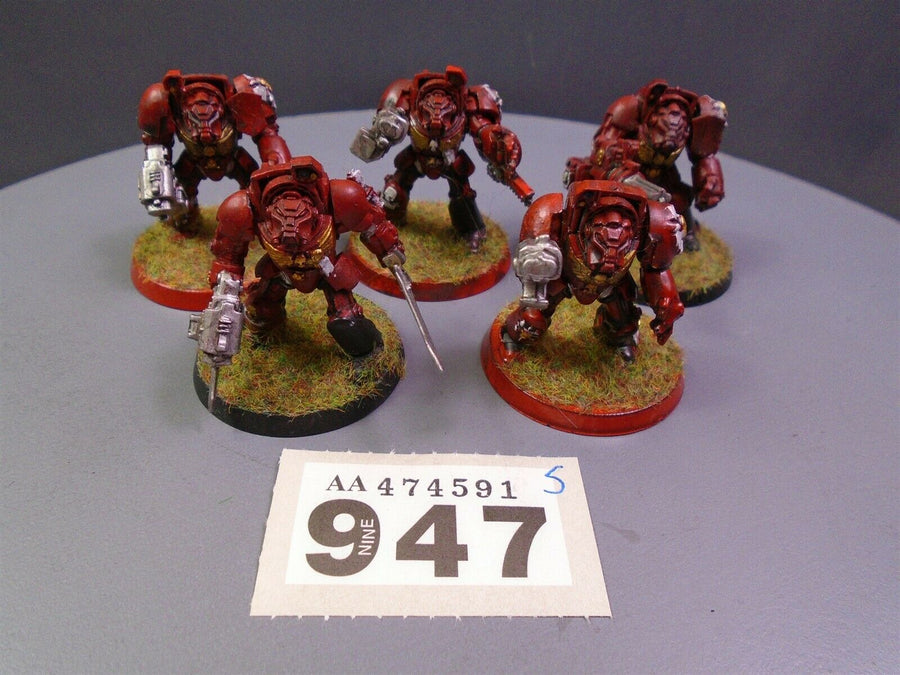 Blood Angels Terminators Squad