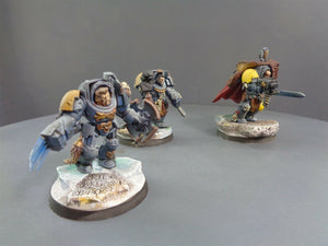 Space  Wolves Wolf Guard Terminators 397
