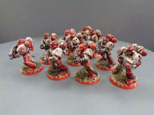Space Marines Tactical Squad 786
