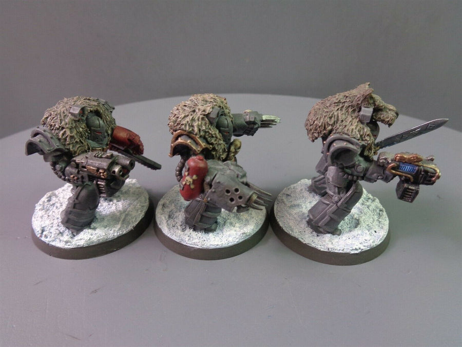 Space  Wolves Wolf Guard Terminators 499