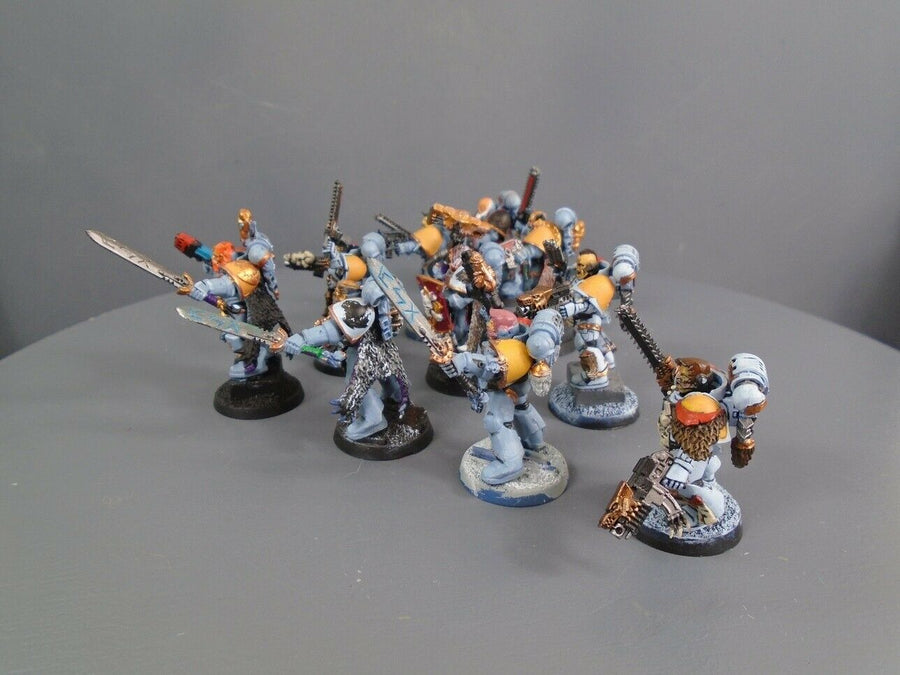 Space  Wolves Wolf Pack 745