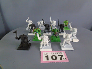 Saurus Warriors