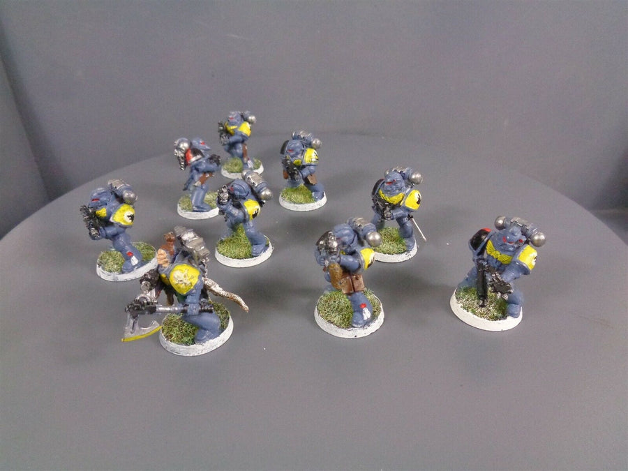 Space  Wolves Wolf Grey Hunters Pack 922
