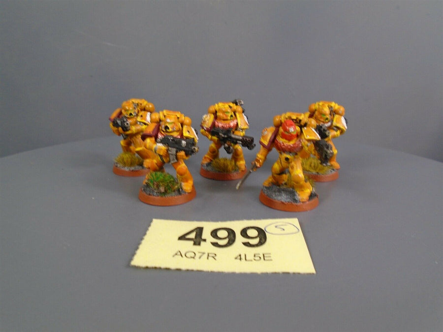 Imperial Fists Combat Tactical Squad