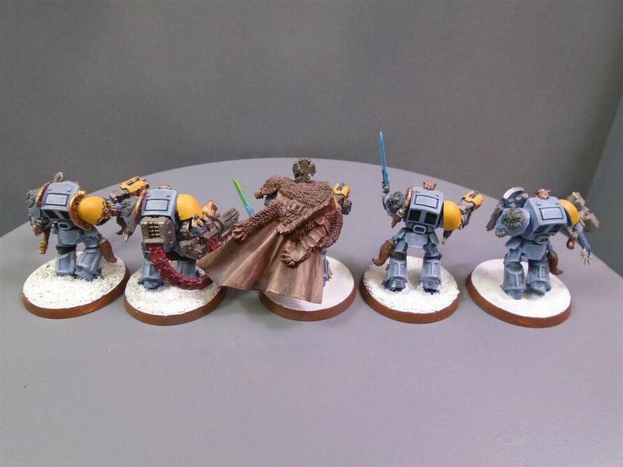 Space  Wolves Wolf Guard Terminators Squad 900