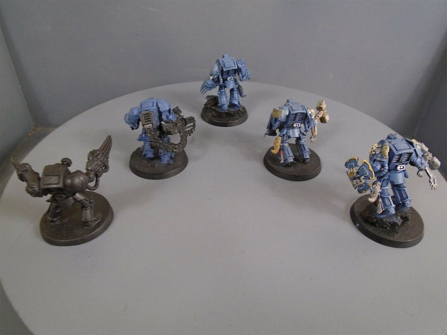 Space  Wolves Wolf Guard Terminators 506