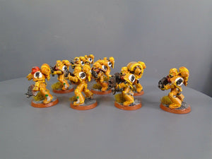 Imperial Fists Tactical Squad