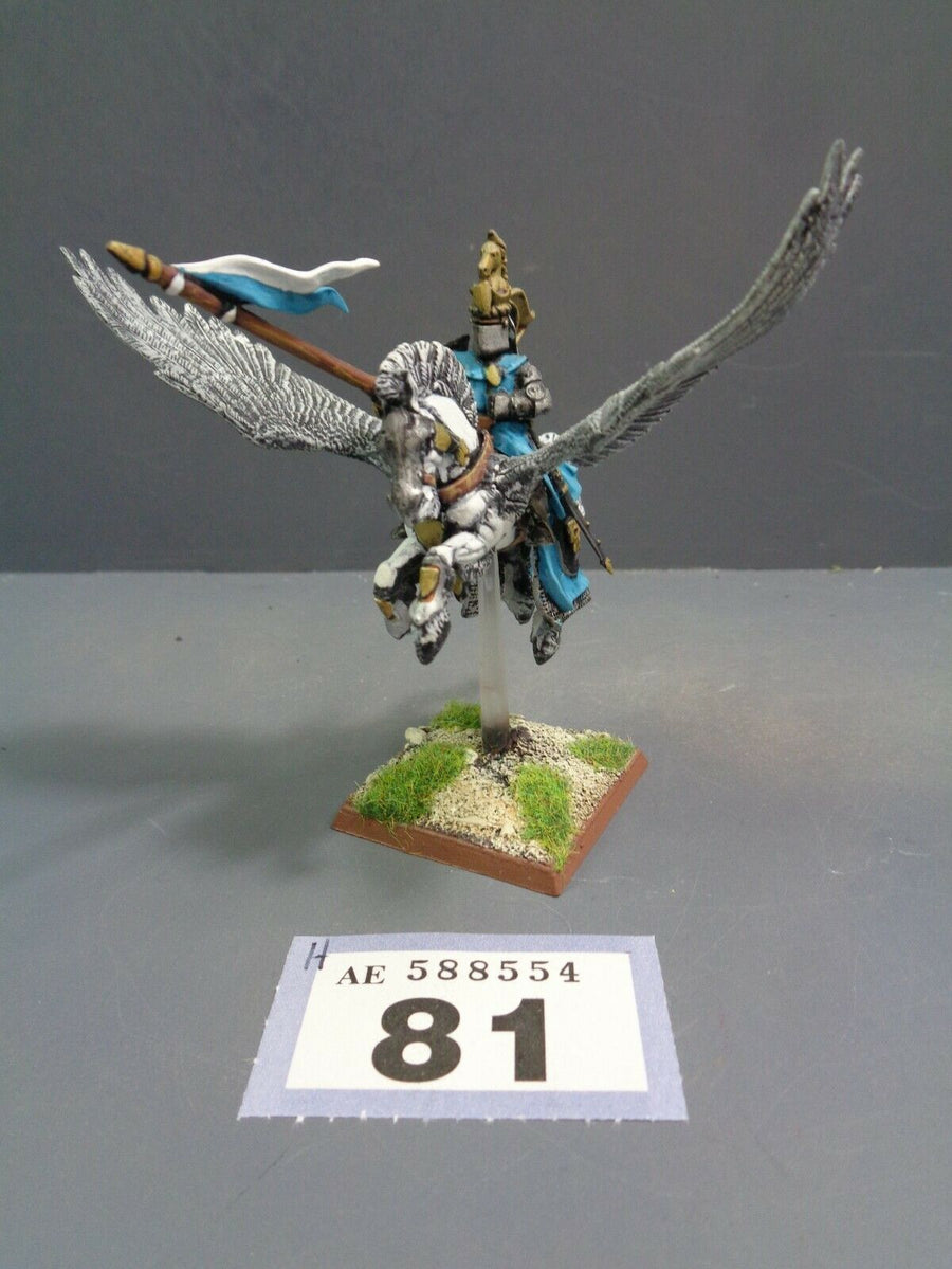 Pegasus Knight 81