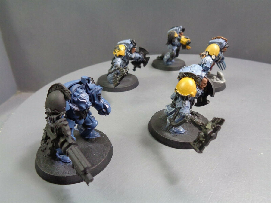 Space  Wolves Wolf Guard Terminators 876