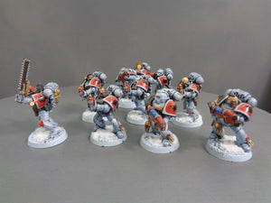Space  Wolves Wolf Pack 801