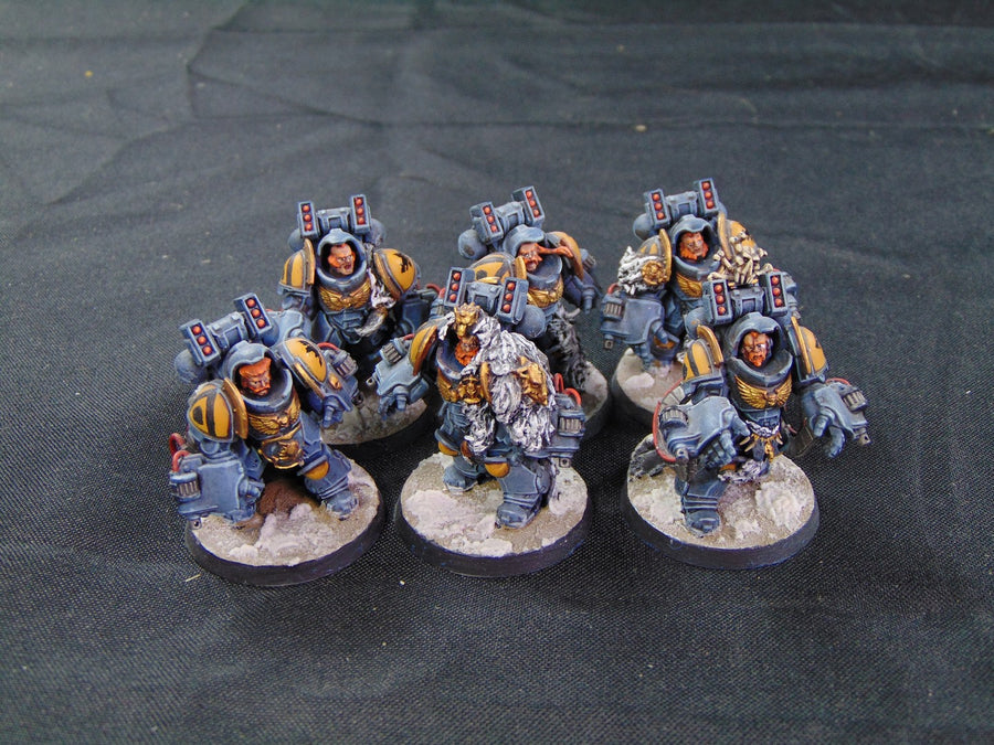 Space Wolves Great Company