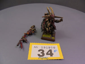 Great Bray Shaman / Malagor The Dark Omen