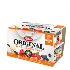 Image of Astro Lactose Free Yogurt 12x100G
