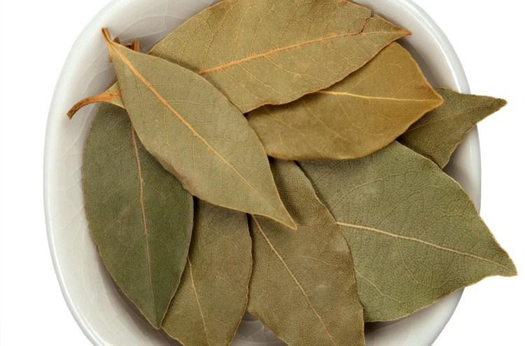 Nancy Fancy Bay Leaves25 G