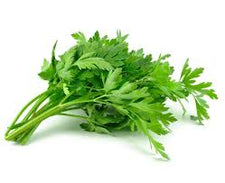 Image of Go Fresh Corriander (Cilantro) 40 G Ea