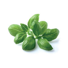 Image of Go Fresh Basil 40 G Ea