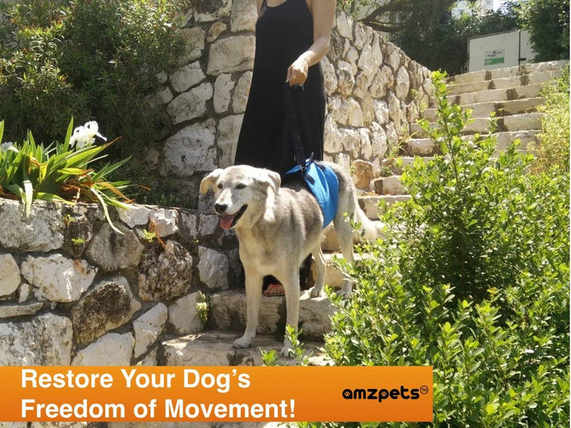 AMZpets Dog Lift Harness Support Sling