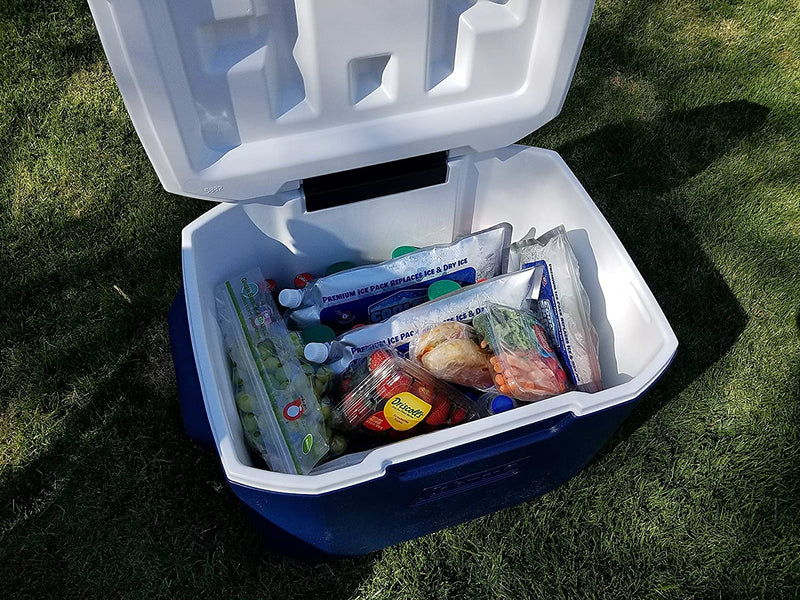 "4 Mid-Size Cooler Freeze Packs 10"" x 10"" The Coldest Pack at 18 Degrees F. No More Ice! Reusable. You Add Water & Save! - C.S. Brand Packs Have Over 4,000 Reviews Averaging 4.6 Stars - Safe USA Made"