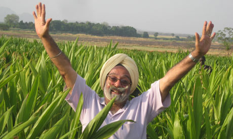 Image result for lohri for farmers