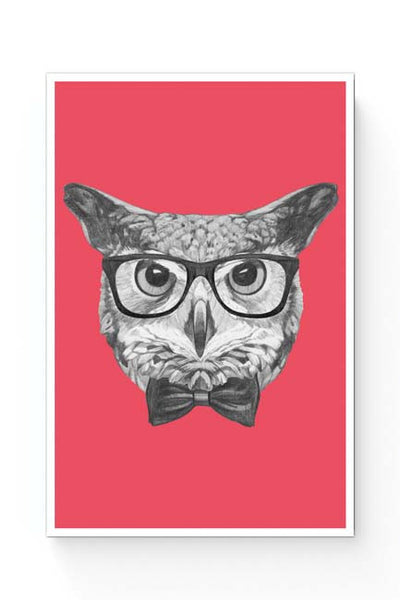 Posters Online | Mr Owl (Red) Illustration Poster Online India | Designed by: Mayank Dhawan