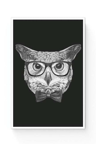 Posters Online | Mr Owl Illustration Poster Online India | Designed by: Mayank Dhawan